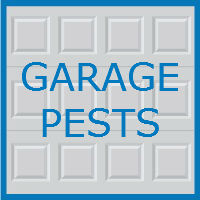 garage pests