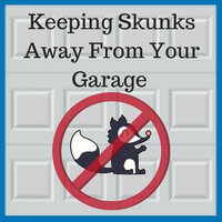 Blue Sky Builders Protecting Your Garage From Skunks
