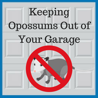 Blue Sky Builders tips for keeping opossums away from your garage