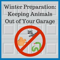 Blue Sky Builders winter animal prevention
